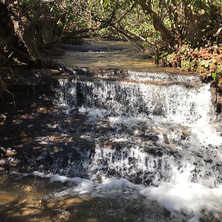 Yellow Branch Falls: photo6.jpg