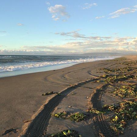 La Paz Sand Dunes: photo2.jpg