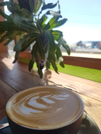 Scamander, Австралия: Swims East Coast Coffee
