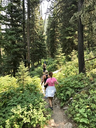 Gallatin Gateway, MT: lush path to Lava Lake was gorgeous in August