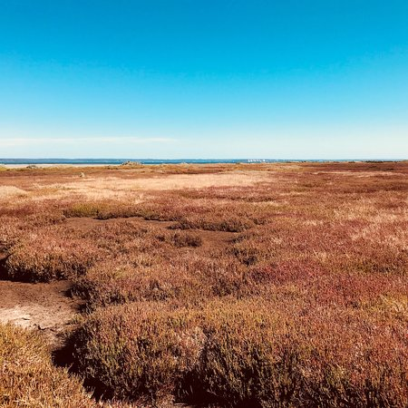 Naturaliste Tours French Island