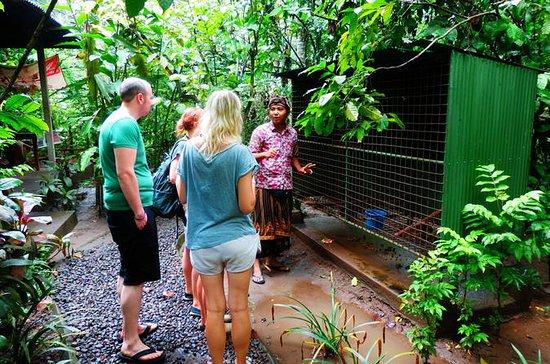 Familienausflug nach Ubud