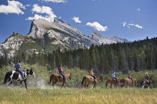 3 Hour Banff Horseback Riding ...