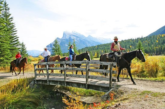 2 horas Banff Horseback Riding...