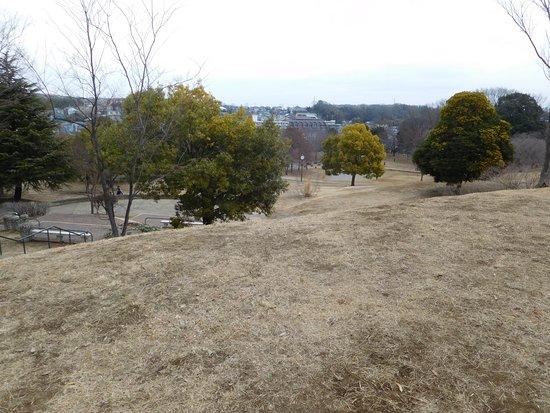 Higashiyamata Park