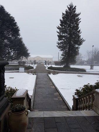 Vizzola Ticino, Italia: 20180303_075714_large.jpg