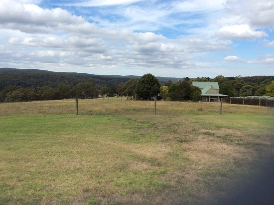 Willung, Australia: Great views over the hills