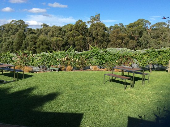 Willung, Australia: Lovely lawns for outside diningif you want