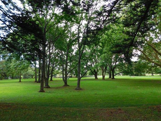 Parque Cornwall: park