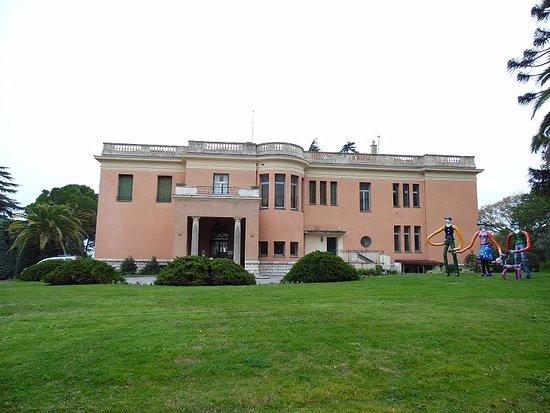 Musee International d'Art Naif Anatole-Jakovsky (Museum of Naive Art): musée