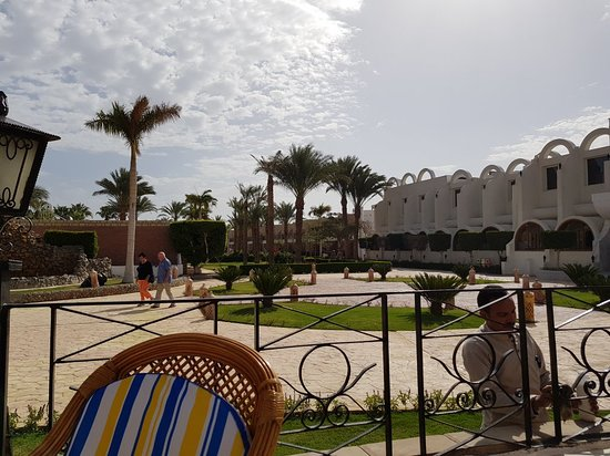 Aladdin Beach Resort: 20180226_092718_large.jpg