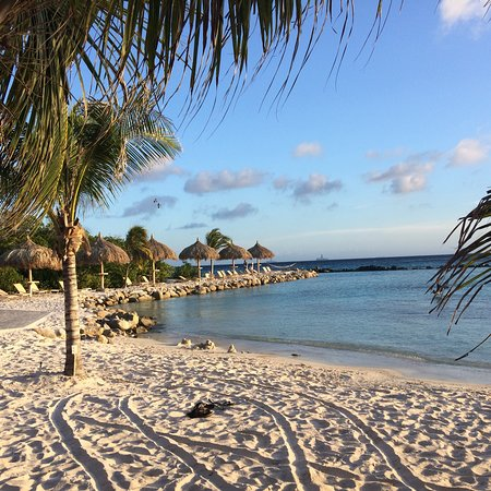 Renaissance Aruba Resort Fab Holiday In Staying At
