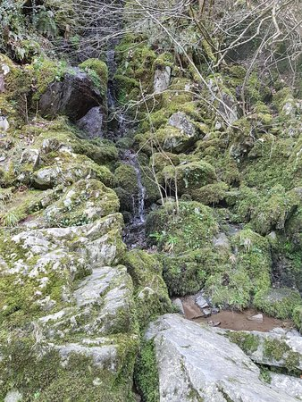 Fairy Glen : 20180222_180807_large.jpg