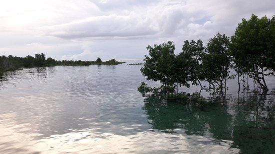 Bunaken Island, Indonesia: 20180301_174336_large.jpg