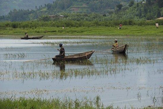 Northern Province, Rwanda: fishing in Lake Ruhondo