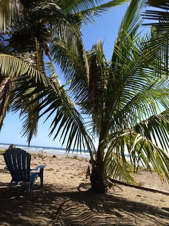 Playa San Miguel, كوستاريكا: IMG_20180219_141303870_large.jpg