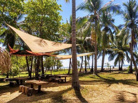 Playa San Miguel, Costa Rica: IMG_20180219_111106587_HDR~2_large.jpg