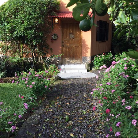 Boquete Garden Inn: Beautiful Gardens with much colour  and plentiful birds for their buffet breakfast.