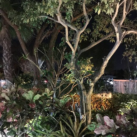 Pirate's Cove Resort and Marina: photo1.jpg