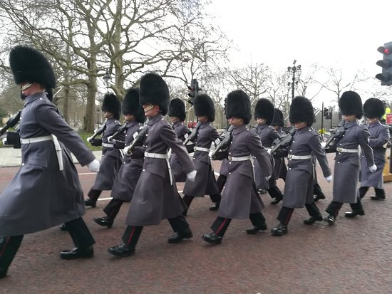 Guida Turistica a Londra  Tours: IMG_20180226_113851_large.jpg