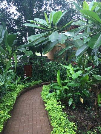 Boutique Hotel Lagarta Lodge: walkway to room