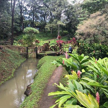 Kilauea, Havai: photo1.jpg