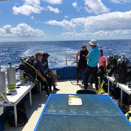 Saba Divers : photo1.jpg