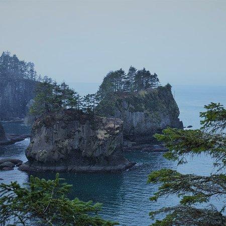 Clallam Bay, WA: 46325_large.jpg