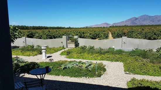 Rawsonville, South Africa: IMG-20180303-WA0024_large.jpg