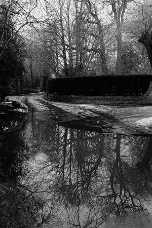 Thames Path 사진