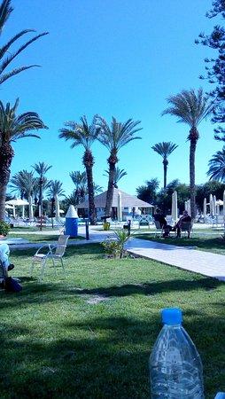Hotel Marhaba Beach: IMG_20180228_135314103_large.jpg