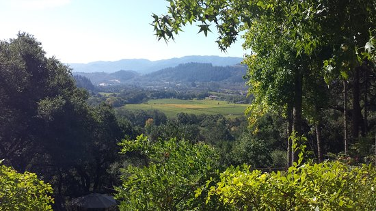 Rombauer Vineyards: The view from the porch