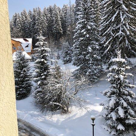 Ana Hotels Sport Poiana Brasov: photo0.jpg
