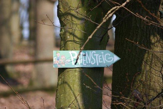 Extertal, Alemania: War eon schöner Tag heute