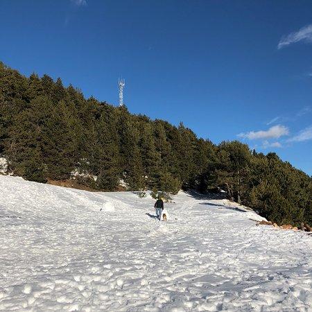 Fornells de la Muntanya, إسبانيا: Fornells de la Muntanya