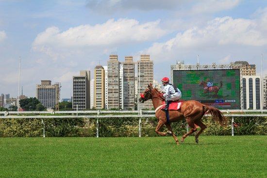 Jockey Club: Corrida