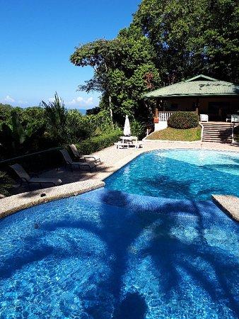 Playa Tortuga, Kosta Rika: 20180301_083441_large.jpg