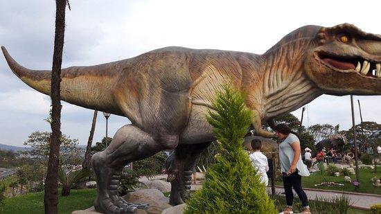 Picture Of Expo Parque De Los