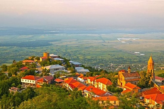 Full day tour to Kakheti: David...