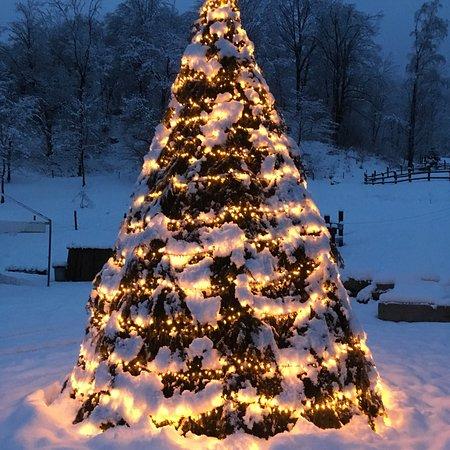 Madonna del Sasso, Italy: Natale