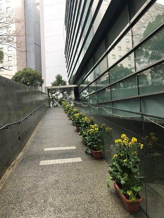 Saka no Ue no Kumo Museum: ミュージアムへのアプローチ