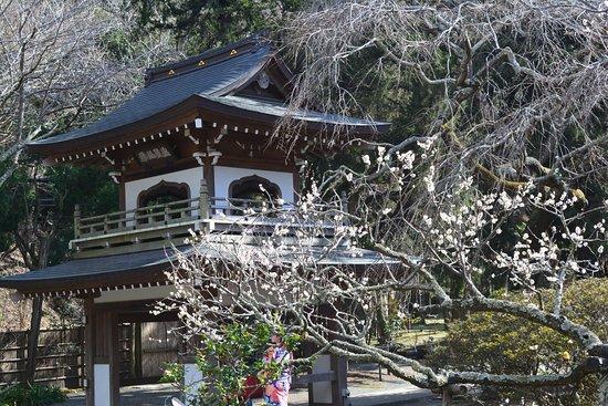 Jochiji Temple照片