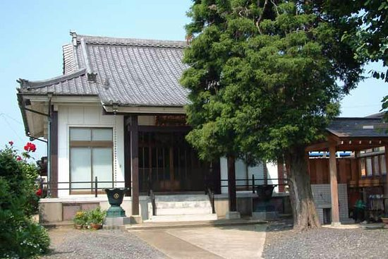 Yuki 사진
