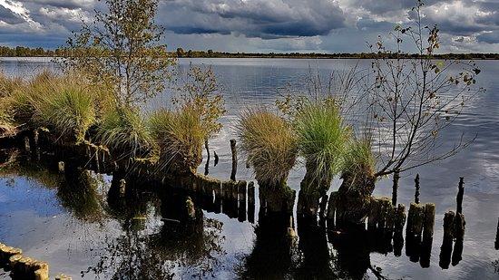 Dornum, Deutschland: Ewiges Meer