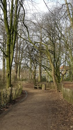 Woluwe-Saint-Lambert, Βέλγιο: Path through the woods