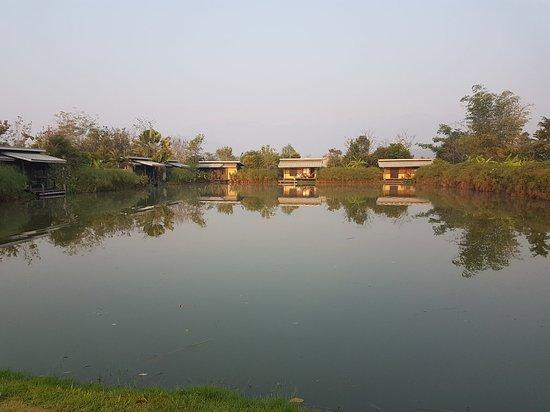 Bueng Pai Farm: 20180303_073925_large.jpg