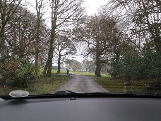 Ross Castle Ranch Reviews County Galway Ireland Tripadvisor