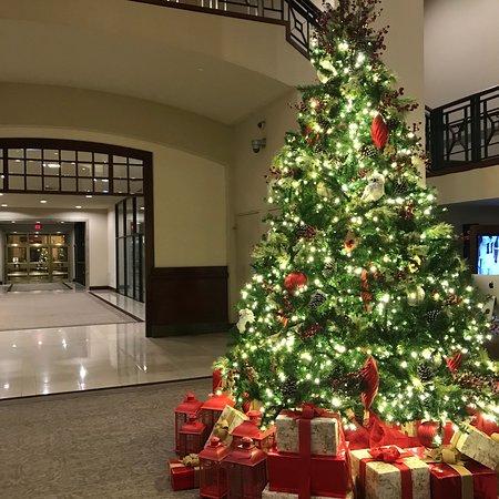 Capital Hilton: photo2.jpg