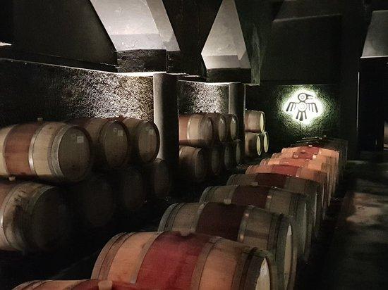 Kaiken Winery: 20180214_124727_large.jpg