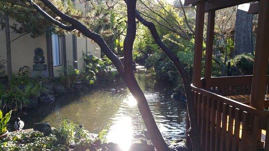 Dinah's Garden Hotel: 20180303_084251_large.jpg